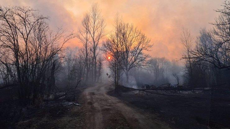 Koronavirus zastínil požáry na Ukrajině: Oheň se blíží k reaktoru v Černobylu