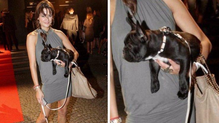 Zoufalá Faltýnová ztratila psa: Za jeho nalezení vám vyplatí pořádný balík. Pomůžete ho najít?