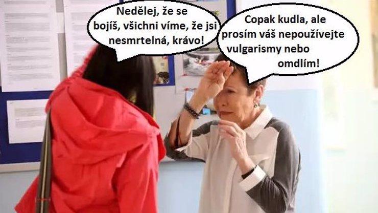 Ulice očima odborníka Novotného: Smrt nechodí po Hejlové, ale po Kašperských Horách!