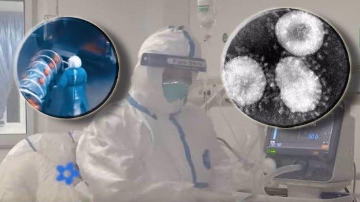 Pětice Čechů se vrací z epicentra smrtící nákazy: Koronavirus má první oběť mimo Čínu