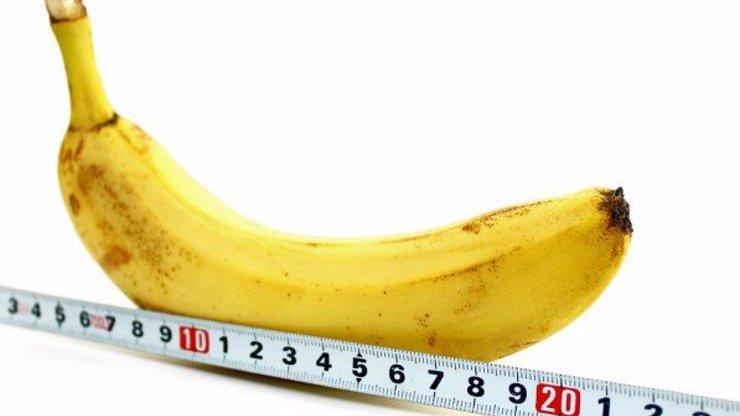 Velký přehled velikostí penisů podle znamení: PANNY mají v kalhotách obří děla a VODNÁŘI maličkého cvrčka, co se ve vás utopí