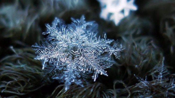 Neuvěřitelné tvary sněhových vloček: 8 fascinujících snímků pořízených neméně fascinujícím přístrojem