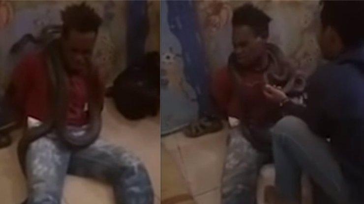 Netradiční policejní metoda: Mladík se nechtěl přiznat ke krádeži, okolo krku mu omotali krajtu!