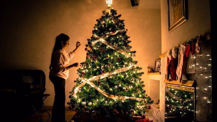 Před vybranými obchody Tesco naleznete prodejní místa s vánočními stromky