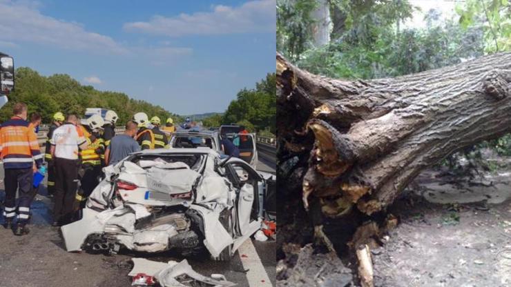 Vražedné bouřky v Česku udeřily: Strom spadl na auto, zabil 2 lidi, děti jsou v nemocnici