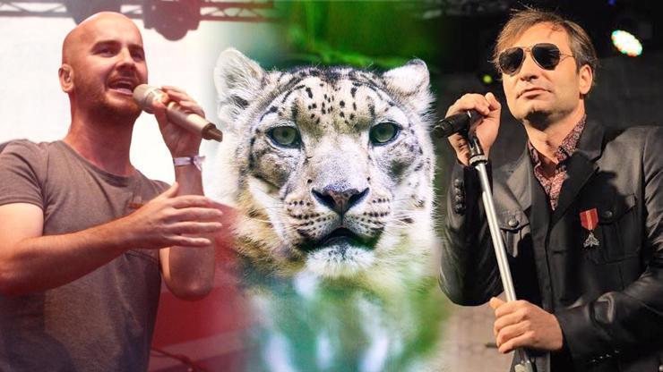 Záchrana zoologických zahrad, kapely podpoří zvířátka online koncertem