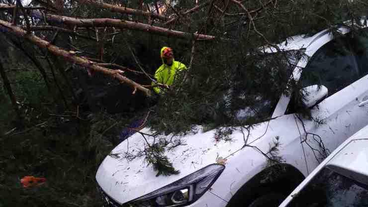 Krutá tragédie v Čížové: Dobří lidé v autě nabídli dětem úkryt, pak je zabil strom