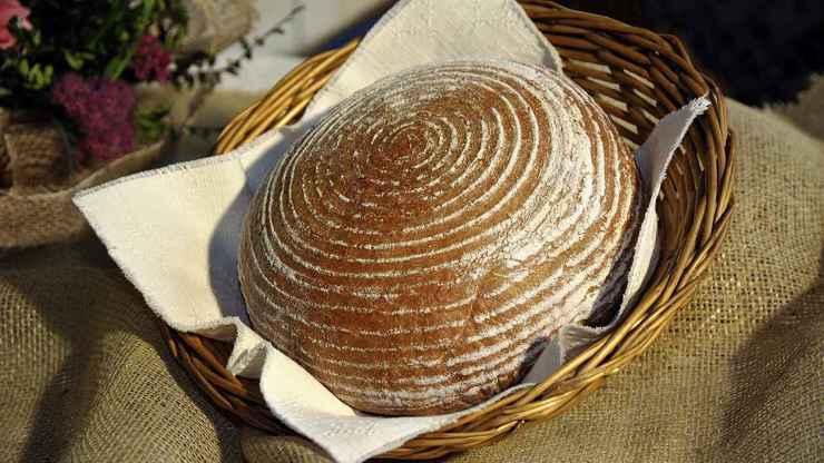 Dny chleba se po dvou letech vracejí do Pardubic.   Odborníci vyberou nejlepší chléb z80 soutěžních vzorků odpekáren z celé republiky