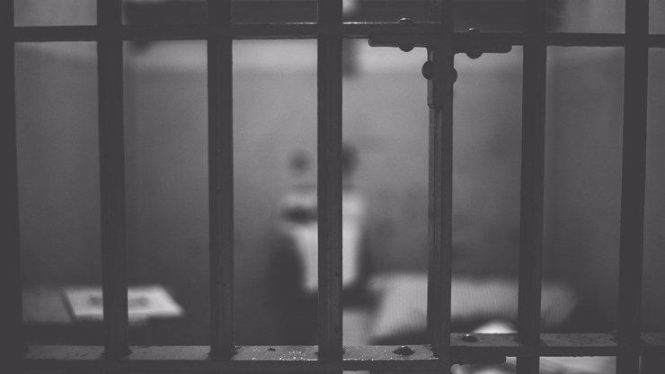 Dceru držel v kleci 10 let: Po vysvobození vydávalo vlčí dítě jen skřeky a vážilo 27 kilo