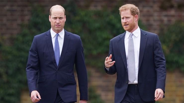 William a Harry očima expertky na řeč těla: Odhalení sochy Diany plné vnitřního napětí