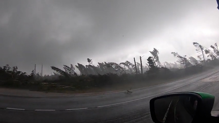 HROZIVÉ VIDEO: Muž natočil apokalyptickou bouřku. Padaly mu na hlavu stromy