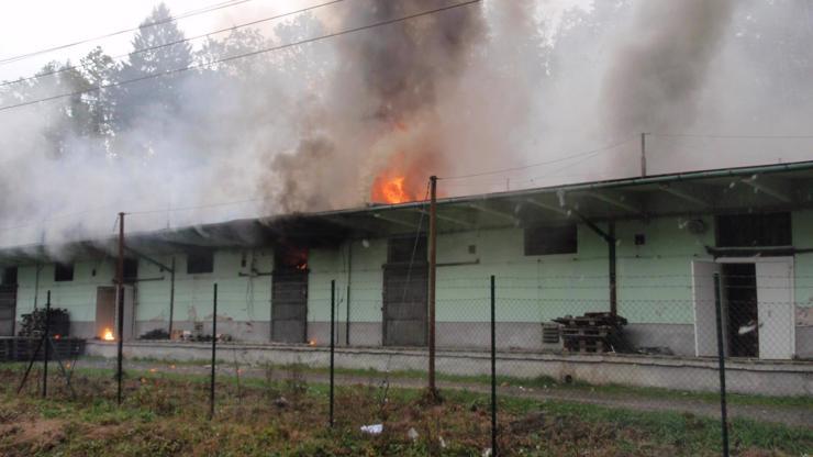 Výbuch muničního skladu ve Vrběticích obrazem: Odklízení trvalo šest let