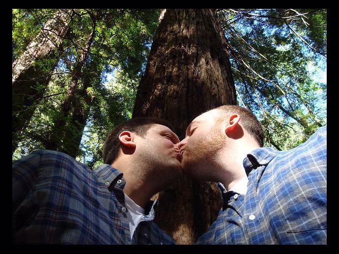 Stejnopohlavní sňatky jsou Lidovcům trnem v oku.
